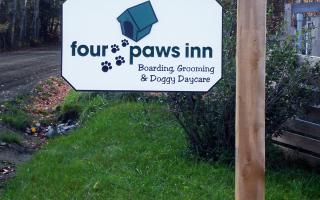 Four Paws Inn